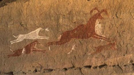 Le fossile d'un des plus vieux chiens du monde découvert en Sibérie | Archeology on the Net | Scoop.it