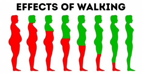 10 Things That Happen to Your Body If You Walk Every Day | Physical and Mental Health - Exercise, Fitness and Activity | Scoop.it