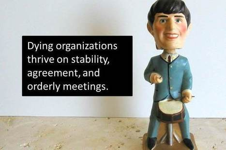 Death to Bobble Head Leaders | Mediocre Me | Scoop.it