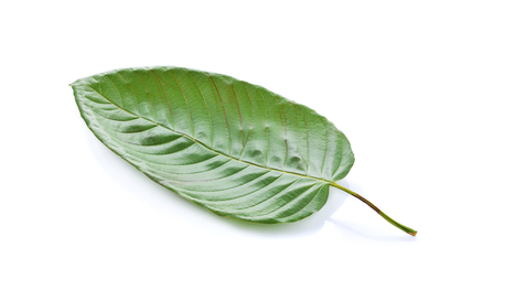 5 Things to Know About Kratom | Sara G  Miller/Liv' in