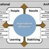 Organisation Archetypes