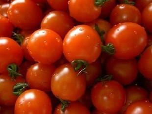 Obtienen tomates de calidad sin fecundación - Noticias de la Ciencia y la Tecnología | All About Food | Scoop.it