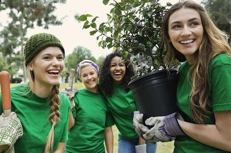 Schools Tree Day - Secondary - Cool Australia | SJC Science | Scoop.it