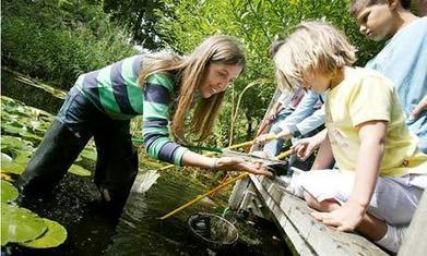 Five ways to turn your students into citizen scientists | Preschool | Scoop.it