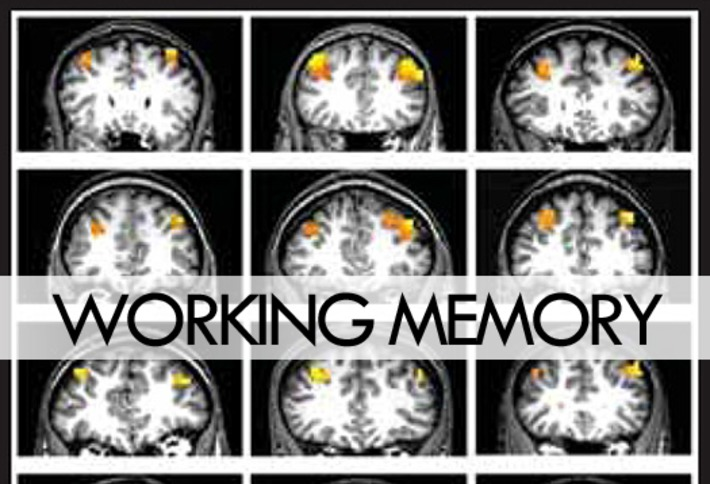 How the brain adapts when goals shift | Knowledge Broker | Scoop.it