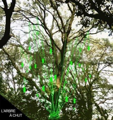 ZAT Montpellier - L'arbre à chut - labopc | DESARTSONNANTS - CRÉATION SONORE ET ENVIRONNEMENT - ENVIRONMENTAL SOUND ART - PAYSAGES ET ECOLOGIE SONORE | Scoop.it