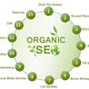 Organic SEO Ranks