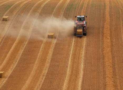 Le changement climatique menace la sécurité alimentaire des pays pauvres | Planete DDurable | Scoop.it