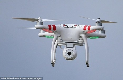 Police In The Netherlands Are Training Eagles To Take Down Dangerous Drones   Barkinet   Scoop.it