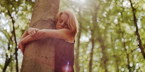 Abrazar árboles ha sido oficialmente validado por la ciencia | Live different taste the difference | Scoop.it
