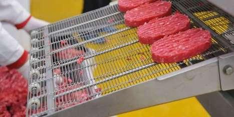 Bordeaux: envie d'un steak ou de saumon à base d'une microalgue? | Innovation Agro-activités et Bio-industries | Scoop.it