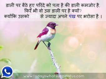 Motivational Quotes In Whatsapp Status In Hindi Scoopit