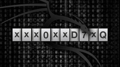 administrator password windows xp crack codesinstmank