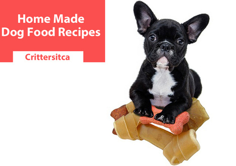 Dog food allergis in dogs lover scoop 10 homemade dog food recipes make your own dog food for allergies forumfinder Choice Image
