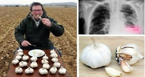 He Ate Garlic On An Empty Stomach Every Day Heres What Happened | Allicin, the heart of garlic | Scoop.it