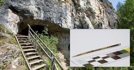 L'aiguille la plus ancienne du monde découverte dans une grotte en Sibérie - Terre énigmatique | Histoire et Archéologie | Scoop.it