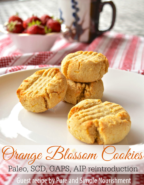 #GuiltFree // Paleo Orange Blossom Cookies | The Man With The Golden Tongs Goes All Out On Health | Scoop.it