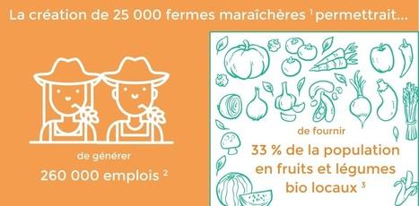 Le grand potentiel de l'agroécologie et de la permaculture à l'horizon 2030   Innovation sociale   Scoop.it