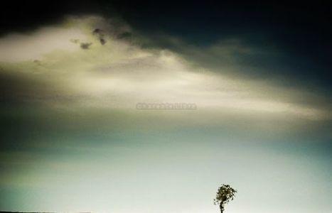 Exposition : de la météo à la photo, Frédéric Pluviaud a eu un flash - CharenteLibre   Regarder le ciel   Scoop.it