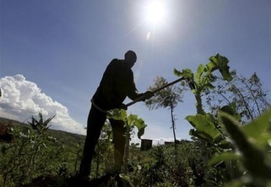 Agriculture and Rural Development Day UN Climate Talks | Social Finance Matters (investing and business models for good) | Scoop.it