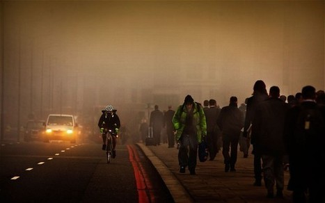 """Cut air pollution in half by taking road less travelled  - Telegraph (""""staying away from main roads"""") 