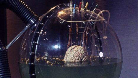 Ces scientifiques très sérieux annoncent avoir « réactivé les fonctions cognitives » de cerveaux morts | Le pouvoir du transhumanisme | Scoop.it