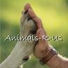 Animals R Us