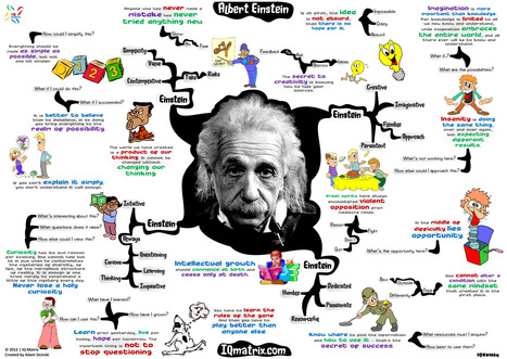 What did Einstein know about Knowledge Management? | CARTOGRAPHIES | Scoop.it