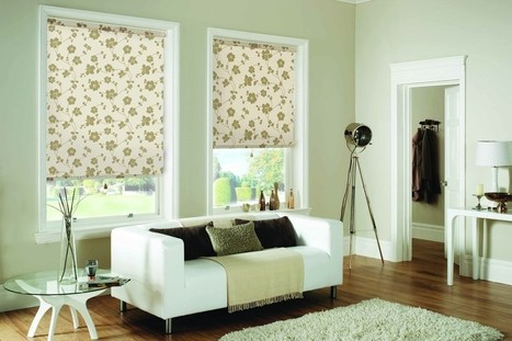 Blinds For Living Room India
