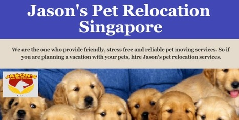 Pet Export Singapore | Scoop it