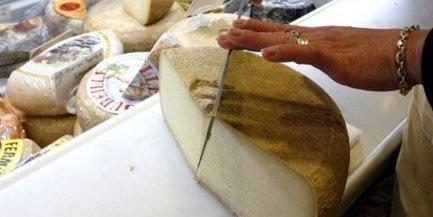 Ossau-Iraty : des producteurs de lait du Béarn veulent revoir l'appellation | Terroir | Scoop.it