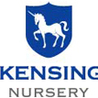 British Preschool and Day Care Kensington Nursery in Dubai