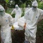 Epidémie Ebola : OMS, responsable mais pas coupable ? | Objectif Transition | Objectif Transition | Scoop.it