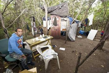 Anger after group of immigrants build 'filthy shanty town' in north London park - Evening Standard   art   Scoop.it