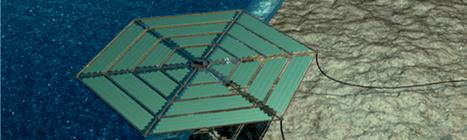 Paneles #Solares Flotantes | Energies renovables i eficiència energètica | Scoop.it