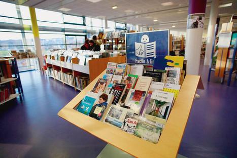 Des livres « faciles à lire » pour combattre l'illettrisme | Veille professionnelle des Bibliothèques-Médiathèques de Metz | Scoop.it