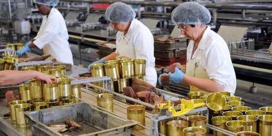 Thons, sardines, maquereaux... Vers une hausse des prix des conserves