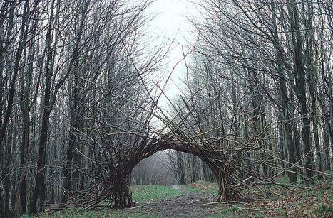 Andy Goldsworthy Oeuvres gravity-defying land artcornelia konrads  