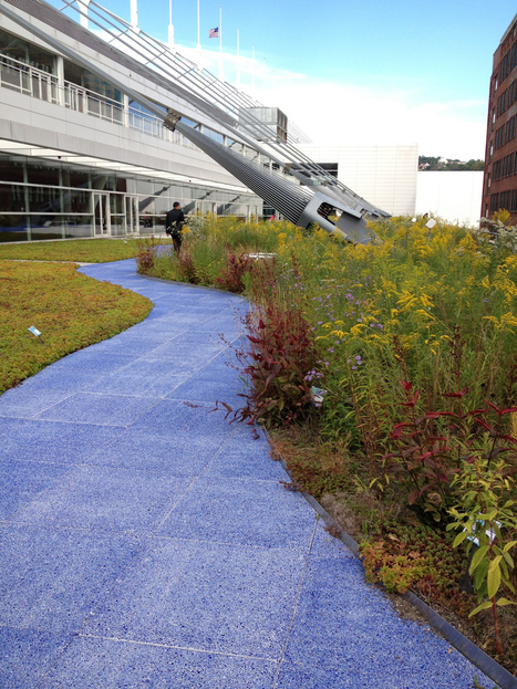 Green Roofs - Pittsburgh Convention Center | Jardines Verticales y azoteas verdes. | Scoop.it