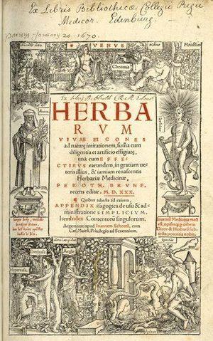 Hitos en la historia de la ciencia V (1500 – 1550) - conCIENCIAtec | Aprendiendo Botánica en la escuela | Scoop.it