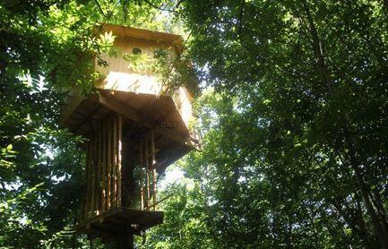 Des cabanes dans les arbres   Just Do It Yourself   Scoop.it