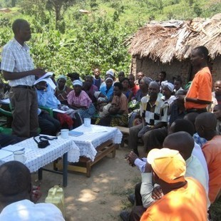 Bold new approach to climate adaptation in rural Uganda | Ecosystem and community-based climate adaptation | Scoop.it