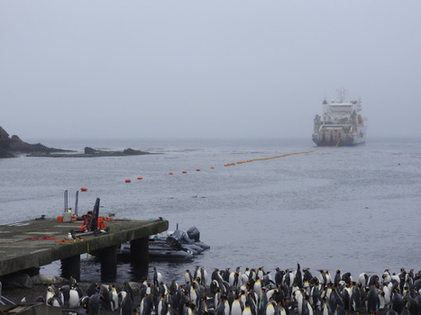 Arrivée du câblier pour la station d'écoute HA04 (1/2)   Arctique et Antarctique   Scoop.it