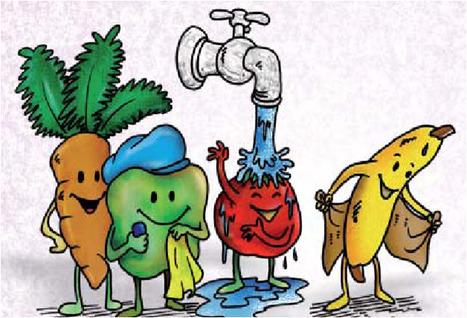 Salud e higiene alimentarias. Manual del buen manipulador de alimentos | Alimentación y Calidad de Vida | Scoop.it