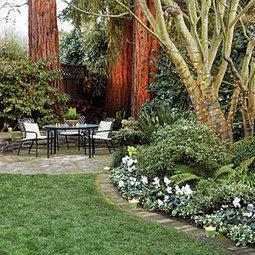 17 quick winter garden spruce-ups   Garden Ideas by Team Pendley   Scoop.it