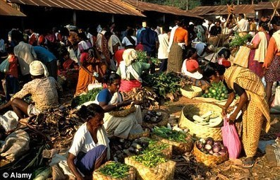 An unrecognisable world: Global population of 9billion will compete for food supplies in 2050 | IB Part 1: Populations in Transition | Scoop.it