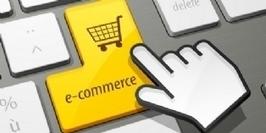 E-commerce : la France condamnée à la stagnation ? - Ecommerce Magazine | Distribution spécialisée produits techniques | Scoop.it