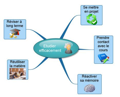 neurosciences et éducation | Revolution in Educ... | Cartes mentales | Scoop.it