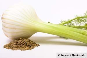 Fennel & Fermented Veggies Are More Effective Than Calcium | Lethbridge Chiropractic Care for Family, Personal or Business Wellness | Scoop.it