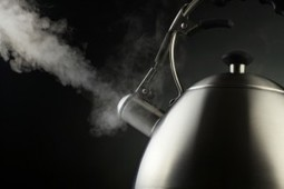 The Pot and the Kettle – Both Still Black | Psychology and Brain News | Scoop.it